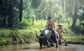 Voyage combiné Vietnam et Cambodge en vingt et un jours