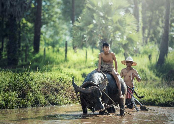Voyage sur mesure Vietnam et Cambodge : Combiné en vingt et un jours