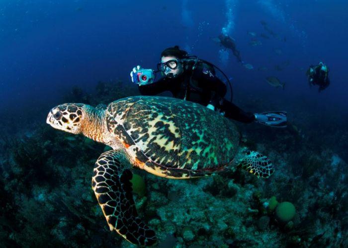 Voyage au Belize : Extension Marine à South Water Caye en trois jours