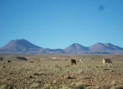 Voyage en Bolivie depuis Barcelone en vingt jours