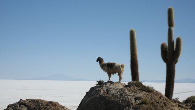 Programmes pour circuit individuel en Bolivie (que voir, que faire)