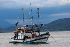 Voyage au Paraná, Etat au sud du Brésil