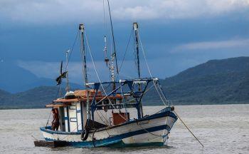 Séjour Brésil : Paraná, état du Sud