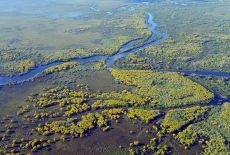 Voyage Brésil : Le parc national du Pantanal Matogrossense