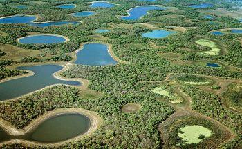 Extension dans le Sud Pantanal en sept jours