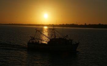 Extension à Belém et Marajó (Nord-Est de l'Amazonie) en quatre jours