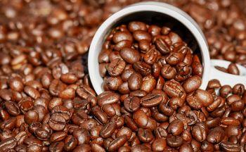 Voyage Colombie : Une finca de café ? En Colombie por favor