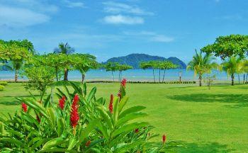 Voyage individuel Costa Rica : Verdoyant Costa Rica