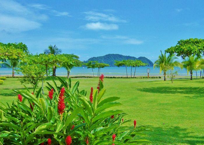 Cinq questions à poser avant son voyage au Costa Rica
