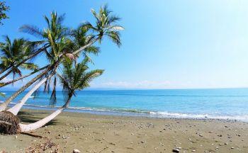 Extension caribéenne et à Sarapiqui en cinq jours