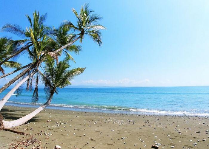 Voyage Costa Rica : Extension caribéenne et à Sarapiqui en cinq jours