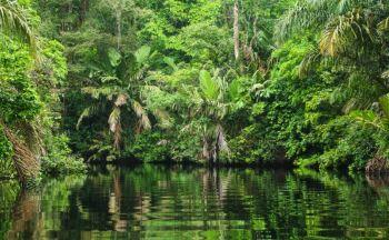 Voyage combiné Guatemala, Costa Rica et Nicaragua en dix sept jours