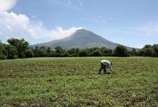 Le parc national des volcans du Salvador