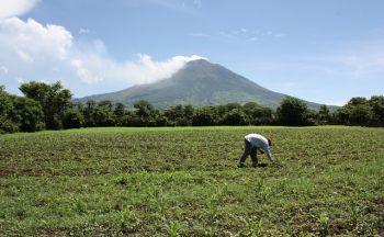 Voyage El Salvador : Le parc national des volcans du Salvador