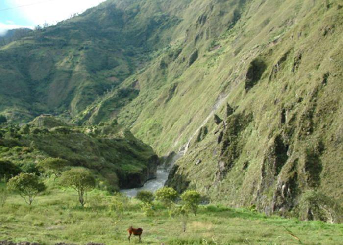 Voyage découverte de l'Equateur et croisière aux Galapagos en dix sept jours