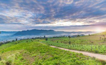 Tours Guatemala : Extension montagnarde de Chichi à Panajachel (Atitlan) en 3 jours
