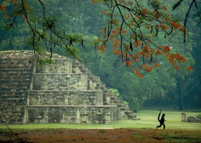 A ne pas manquer pour sept jours au Honduras