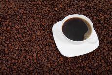 Circuit Nicaragua : la route du café