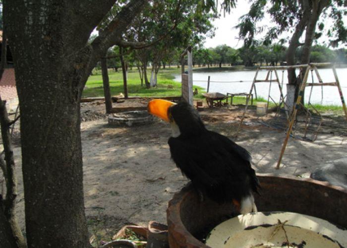 Voyage découverte du Paraguay en douze jours