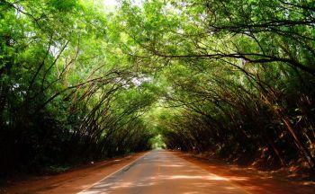 Voyage combiné Paraguay et Uruguay avec extension à Iguaçu en vingt six jours