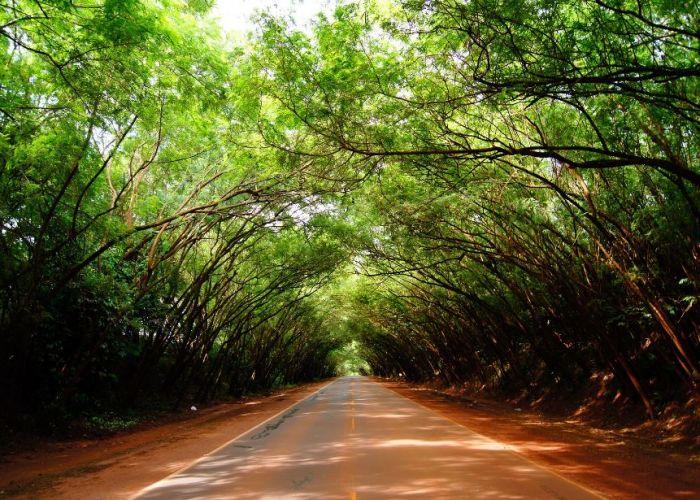 Circuit Paraguay et Uruguay avec extension à Iguaçu en vingt-six jours