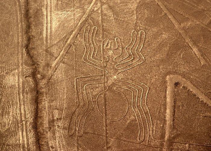 Voyage au Pérou: Lignes et géoglyphes de Nazca et de Pampas de Junama