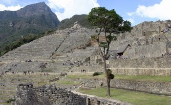 Circuit Pérou : Zone archéologique de Chan Chan