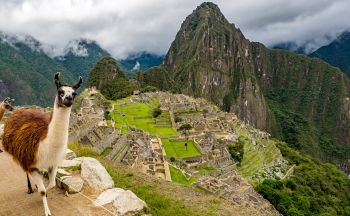 Circuit Pérou : Essentiels du Sud en Aquarelle en quatorze jours
