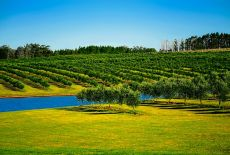 Organisateur de voyage Uruguay : Quel circuit individuel ?