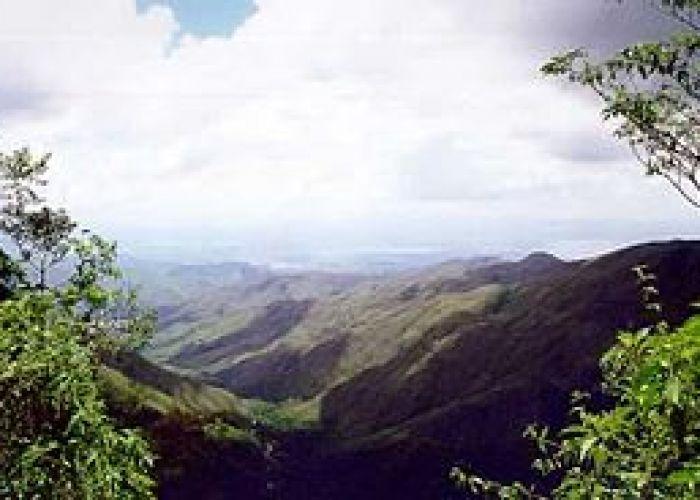 Tours Venezuela : parcs marins du Venezuela en six jours