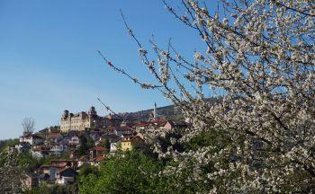 Voyage sur mesure en Bosnie-Herzégovine : Journée d'excursion à Mostar