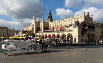 Circuit pas cher en Pologne : Demie-journée à l'Auschwitz-Birkenau