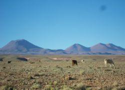 Voyage en Bolivie de Barcelone