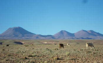 Voyage en Bolivie de Barcelone de vingt jours