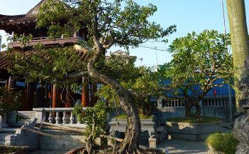 Voyage découverte du Vietnam du Nord au Sud en vingt trois jours