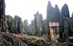 Voyage en Chine Shanghai- Xian- Pékin