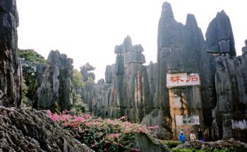 Voyage en Chine Shanghai- Xian- Pékin en quinze jours