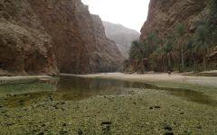 Prélude Omanais