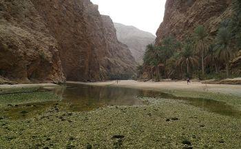 Voyage découverte du Sultanat d'Oman en onze jours