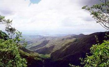 Extension Caraïbe à Choroni, aux parcs de Morrocoy et Pittier en six jours