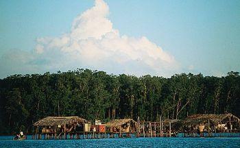 Extension au delta de l' Orénoque en quatre jours