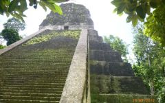 Fugue maya (Copan, Tikal, Yaxha), avec nuit à Rio Dulce, 4 jours/3 nuits