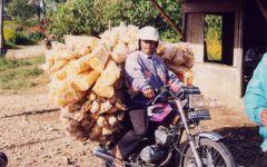 Fugue à Ujungkulon : la Java inconnue de l Ouest, 8 jours/7 nuits