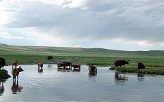 Extension aux sables chantant, Gobi extrême sud