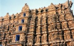 Voyage combiné Inde du Sud - Sri Lanka