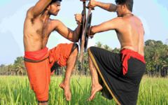 Séjour en Inde au Kerala