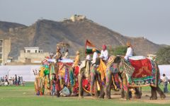 Circuit classique en Inde du Nord