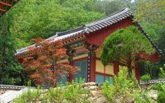 Un séjour en Corée du Sud