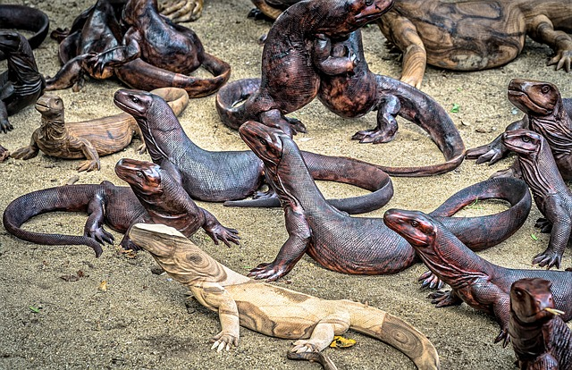 Voyages aventure Indonésie: Le parc national de Komodo