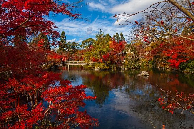 Voyage individuel Japon : Monuments historiques de l'ancienne Kyoto